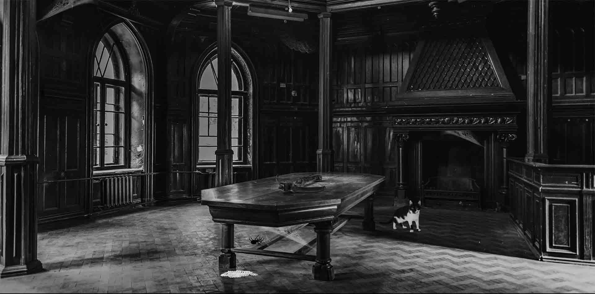 Krimidinner Iv Teil Spuk Von Darkwood Castle